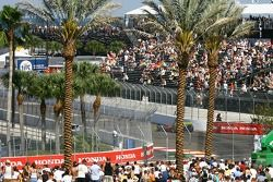 Fans at St. Pete