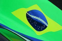 Brazilian Flag Detail