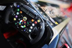 Vitaly Petrov, Lotus Renault GP, stearing wheel, detay