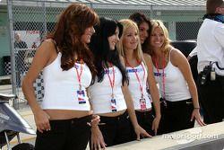 Les charmantes Indy girls
