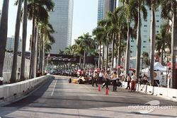 Pit lane lined with palm trees
