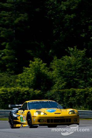 #4 Corvette Racing Compuware Chevrolet Corvette C6 ZR1: Oliver Gavin, Jan Magnussen