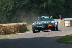 Win Percy: Jaguar XJS TWR