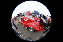 #99 GAINSCO/Bob Stallings Racing Chevrolet Riley