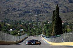 #4 Hexis AMR Aston Martin DB9: Christian Hohenadel, Andrea Piccini
