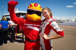 Firestone Firehawk with Miss Izod IndyCar series