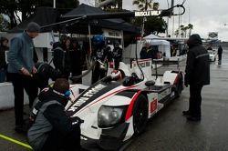 #6 Muscle Milk Pickett Racing HPD ARX-03a: Lucas Luhr, Klaus Graf