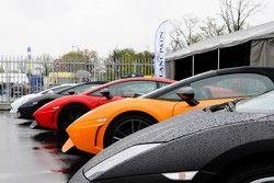 Veel Lamborghini's