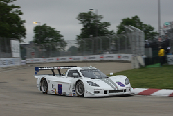 #5 Action Express Racing Corvette DP: David Donohue, Terry Borcheller