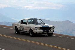 #150 Ford Mustang: Robert Hill