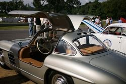 """Zondag in het park Concours & """"Gathering of the Marques"""""""
