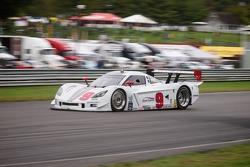 #9 Action Express Racing Corvette DP: Joao Barbosa, Darren Law