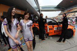 Las chicas Kw y Norbert Michelisz, BMW 320 TC, Zengˆ Motorsport