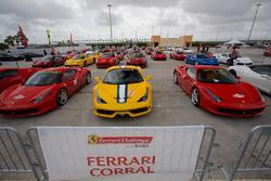 Ferrari Corral