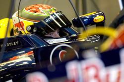Брендон Хартлі, Red Bull RB4 Renault