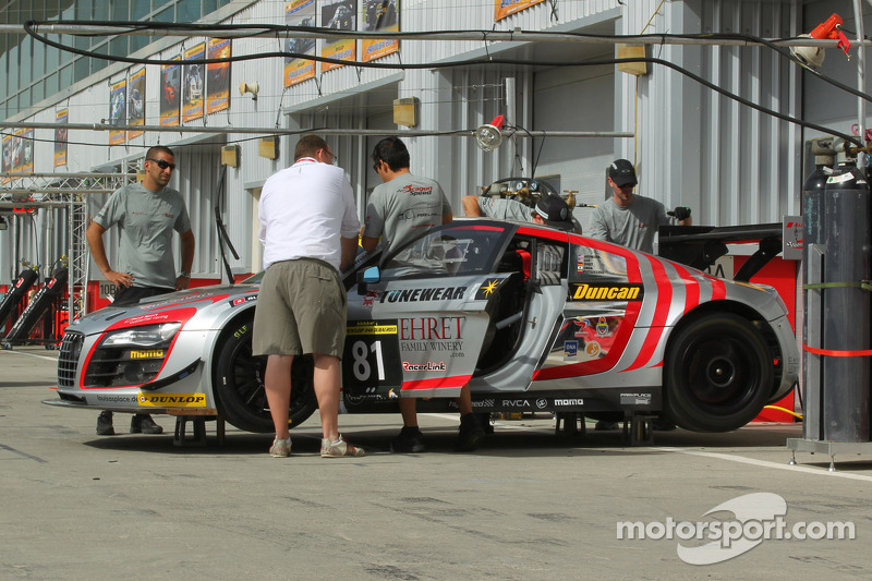 #81 DragonSpeed Audi R8 LMS Ultra: Peter Aronson, Enzo Potolicchio, Pierre Ehret, Hideki Onda, Eric