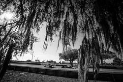 #11 JDX Racing Porsche 911 GT3 Cup: Mike Hedlund, Jan Heylen, Jon Fogarty, #6 Muscle Milk Pickett Ra