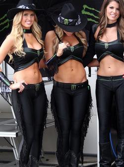 Chicas encantadora en el paddock