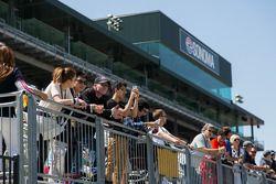 Fans at Sonoma raceway Ferrari Challenge