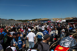 Fans pack the grid