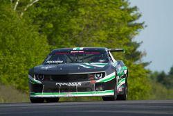 #33 TransAm Proline/Pinnacle Autosport: Gregg Rodgers