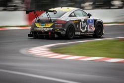 #112 pro Handicap e.V. Audi TT S (SP4T): Wolfgang Müller, Oliver Rudolph, Partel Aditya