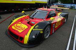 #42 Team Sahlen BMW Riley: Dane Cameron, Wayne Nonnamaker