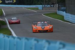 #4 8 Star Motorsports Corvette DP: Luis Diaz, Emilio Di Guida