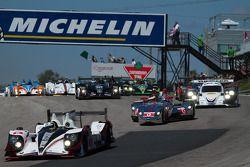 Race start met #6 Muscle Milk Pickett Racing op kop