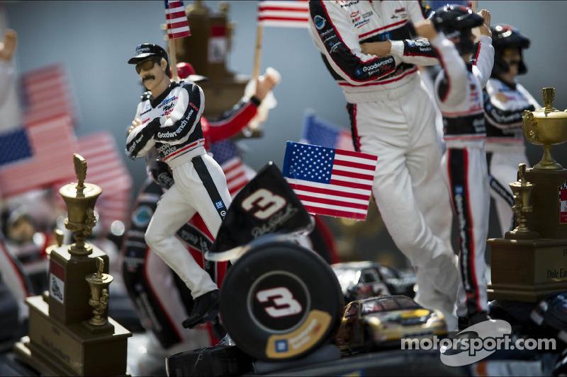 Een Dale Earnhardt-fan
