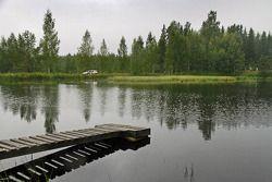 Роберт Кубица и Мацей Баран. Ралли Финляндия, секция 2.