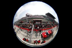 Miguel Molina, Audi Sport Team Phoenix Racing, Audi A5 DTM