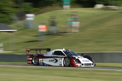 #60 Michael Shank Racing Ford/Riley: John Pew, Michael Valiante