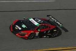 #69 HART Acura NSX GT3: Chad Gilsinger, Ryan Eversley, Sean Rayhall, John Falb