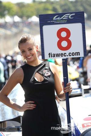 Grid girl van Anthony Davidson, Sebastien Buemi, Stephane Sarrazin, Toyota Racing, Toyota TS030, Hyb