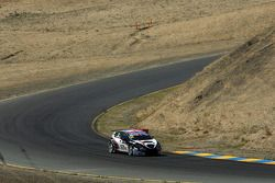 Tom Boardman, SEAT WTCC, Special Tuning Racing