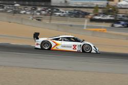 #8 Starworks Motorsport BMW / Riley: Brendon Hartley, Scott Mayer