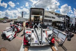 #6 Muscle Milk Pickett Racing HPD ARX-03c HPD