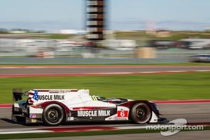 #6 Muscle Milk Pickett Racing HPD ARX-03c HPD: Lucas Luhr, Klaus Graf