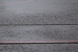 Fuerte lluvia en el paddock