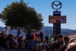 Fans watching superbike race