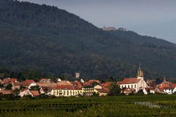 Alsace countryside