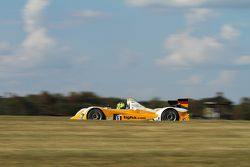 #81 DragonSpeed Oreca FLM09 Chevrolet: Mirco Schultis, Renger van der Zande