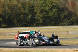 #551 Level 5 Motorsports, HPD ARX-03b Honda: Scott Tucker, Ryan Briscoe