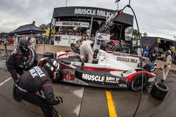 Pit stop #6 Muscle Milk Pickett Racing HPD ARX-03c HPD: Lucas Luhr, Klaus Graf, Romain Dumas