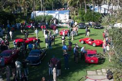 Ferraris on the lawn at the Breakers