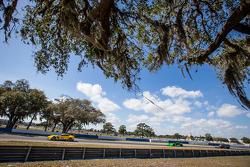#3 雪佛兰克尔维特 Racing 雪佛兰 雪佛兰克尔维特 C7.R: 扬·马格努森, 安东尼奥·加西亚, #1 Extreme Speed Motorsports HPD ARX-03b 本田: 斯