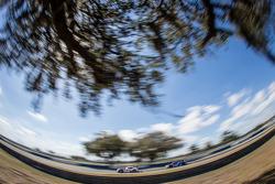 #56 BMW Team RLL BMW Z4 GTE: Andy Priaulx, Dirk Werner, #60 Michael Shank Racing with Curb/Agajanian Riley DP Ford EcoBoost: John Pew, Oswaldo Negri, Justin Wilson