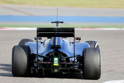 Felipe Nasr, third driver, Williams F1 Team