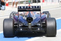Red Bull Racing RB10: Heck